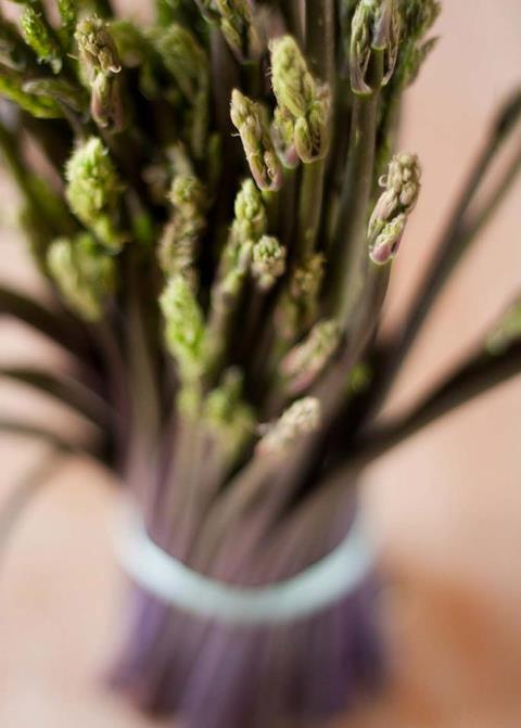la ricetta della domenica| risotto con bruscandoli e scampi