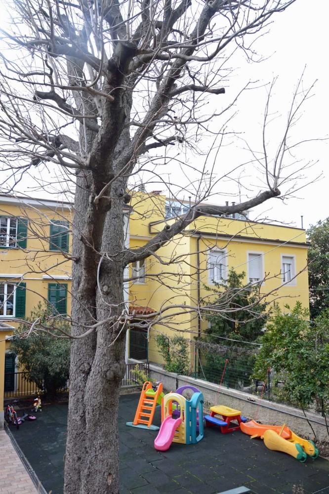 fondazione luchetta, ota, d'angelo, hrovatin | la casa di via Valussi