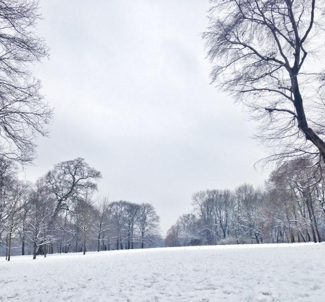 Englischer Garten con la neve